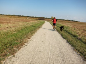 Running or riding with a dog requires a dog that can keep up. Or the other way around.