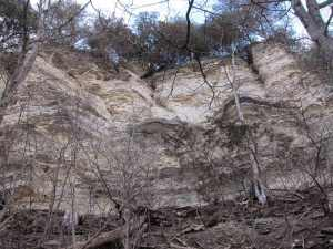 The road in Palisades Park ascends the hill that contains these bluffs.