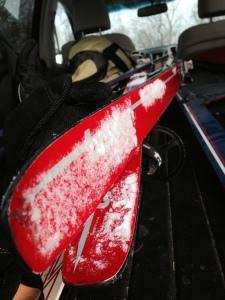 Skis in car