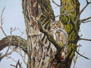 "Great horned owl, acrylic on board. 11"" X 14"". 2013."
