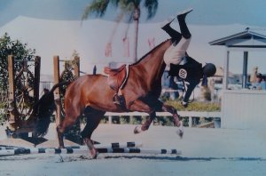Clearly Cid Carver was head over heels about show jumping