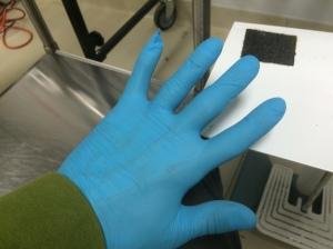 Food Blue Glove