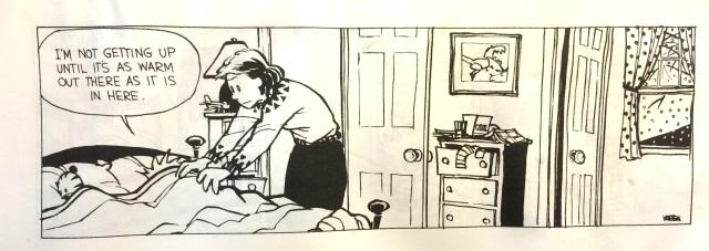 Calvin in Bed