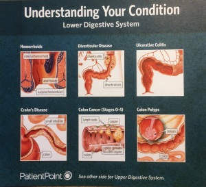 Understanding your colon isn't that hard. There's a lot of s*** going on down there.