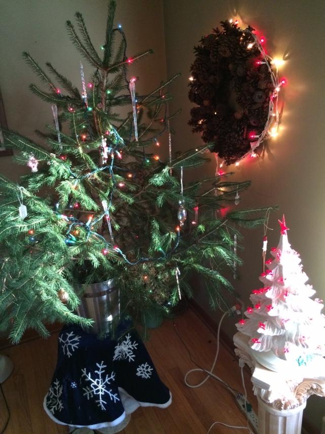 Christmas Tree 2015.jpg