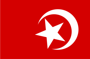 800px-Nation_of_Islam_flag.svg
