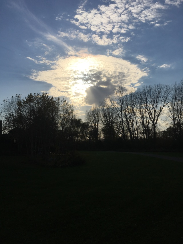 Nelson Sunset.jpg