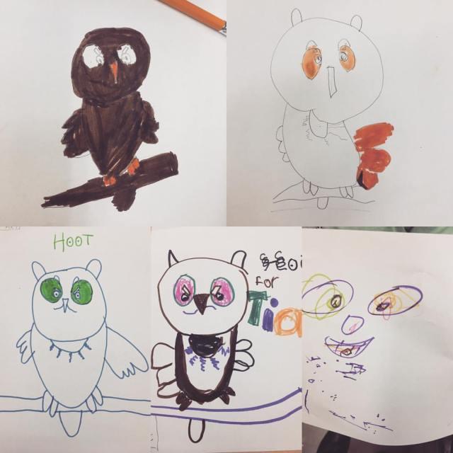 Owl Drawings.jpg