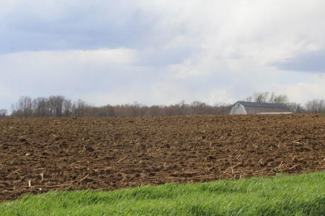 Soil-1-1024x683.jpg