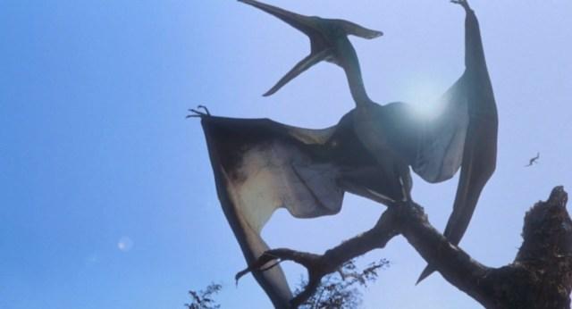 pteranodon01.jpg