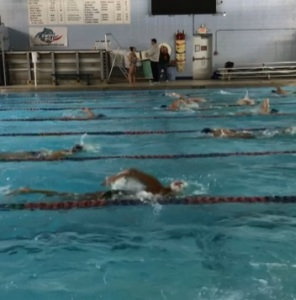 Swimmers at Marmion 2