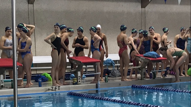 Swimmers at Marmion.jpg