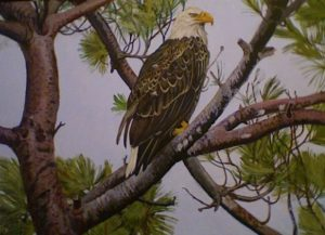 Bald Eagle Painting